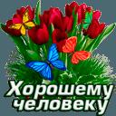 https://dp.mycdn.me/getImage?photoId=852135130327&type=4